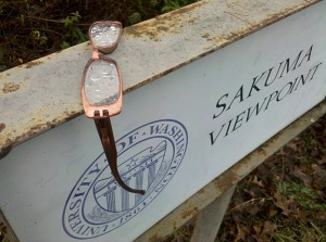 Glasses left on Viewpoint Sign